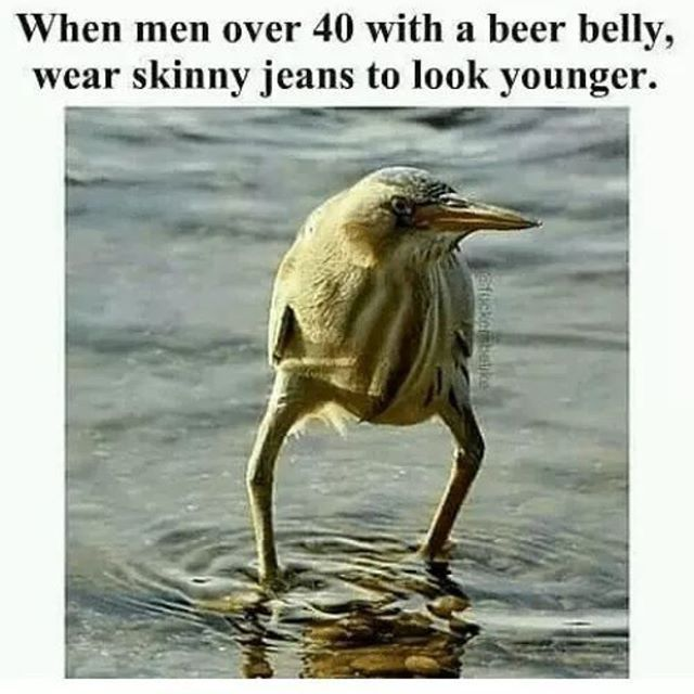 Men over 40 with a beer belly #funnymemes #memes #meme #memesdaily #memestagram #instadaily #lol #lolpics #lolpicture #lolpicsdaily #funnypics #funnypictures #funnypic #picoftheday #hilarious #hilariousmemes #wackyypics