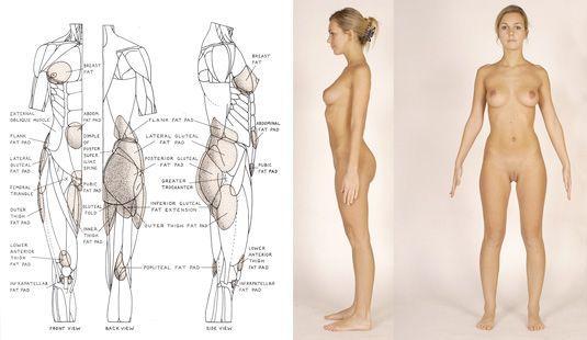 A pose male 3d model - Google Search