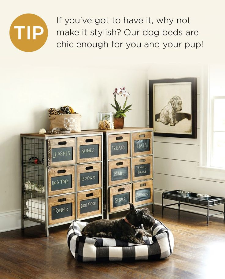 10 Tips For Refreshing Your Home. Dog StorageStorage ...