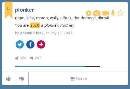 dope, idiot, moron, wally, pillock, dunderhead, dimwit