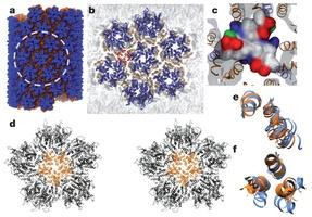 All-atom molecular dynamics simulation of CA tubular assembly.