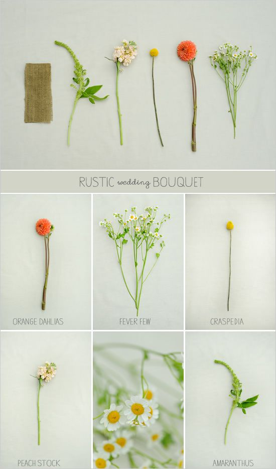 184 best Flowers & Greenery images on Pinterest | Bridal bouquets ...