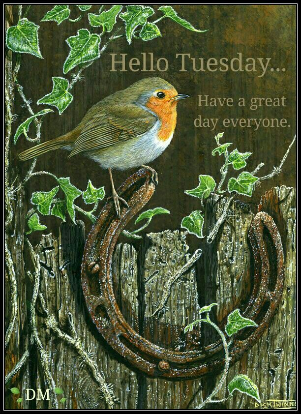 TUESDAY BLESSINGS!  Note: Love ye your enemies, and do good, and lend, hoping for nothing again; and your reward shall be great, and ye shall be the children of the Highest: for He is kind unto the unthankful and to the evil. Be ye therefore merciful, as your Father also is merciful. - And watch the blessings of the Lord fall heavily upon your lives...'Luke 6:35-36(KJV)°°{DM}°°: