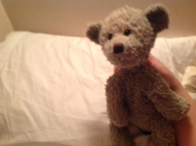 Lost on 19 Jul. 2016 @ Port Underwood Road, Marlborough, New Zealand. Beloved teddy of devastated five year old lost somewhere (left on roof of car accidentally) on Port underwood Road, near Hakahaka Bay and Oyster Bay, Port Underwood, Marlborough, NZ, during the NZ ... Visit: https://whiteboomerang.com/lostteddy/msg/s3skk7 (Posted by Ruth on 03 Aug. 2016)
