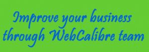 WebCalibre-best-design-digital-marketing-company