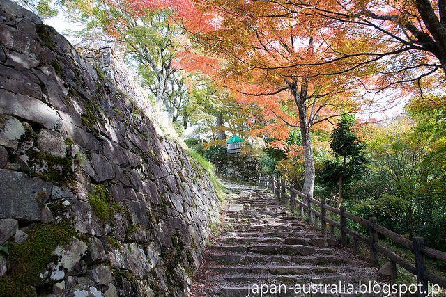 Autumn Leaves ~ Koyo (紅葉) at Gujo Hachiman Castle in Gifu Prefecture