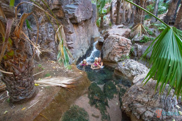 Zebedee Springs, El Questro, Western Australia  El questro and other places in the Kimberly region is 1 day long drive from geraldton