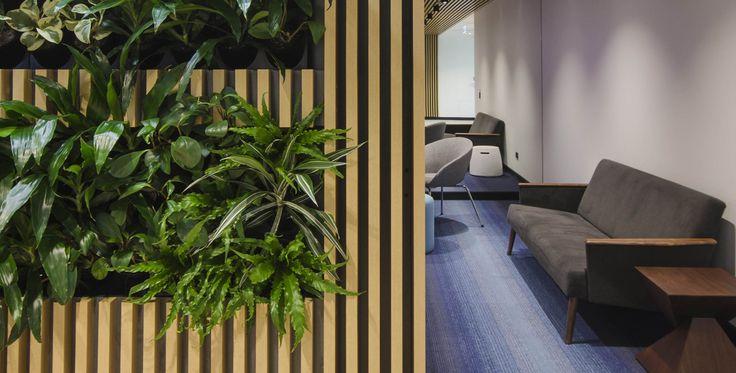 Clarendon Homes, Sydney.  Carpets Inter EcoSoft Carpet Tiles
