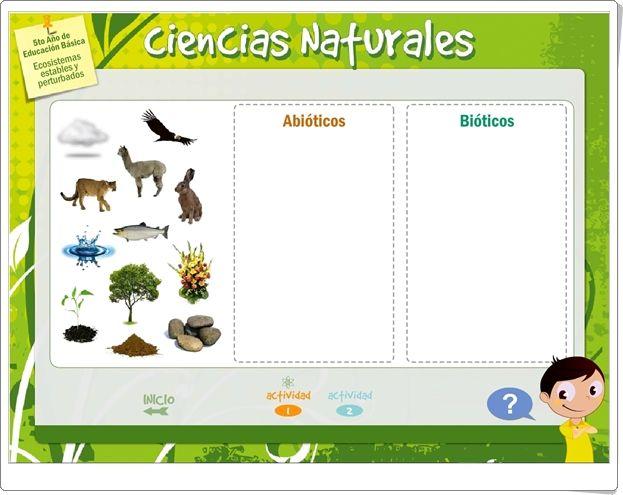 """""""Ecosistemas estables y perturbados"""" (Juego de Ciencias Naturales de Primaria)"""