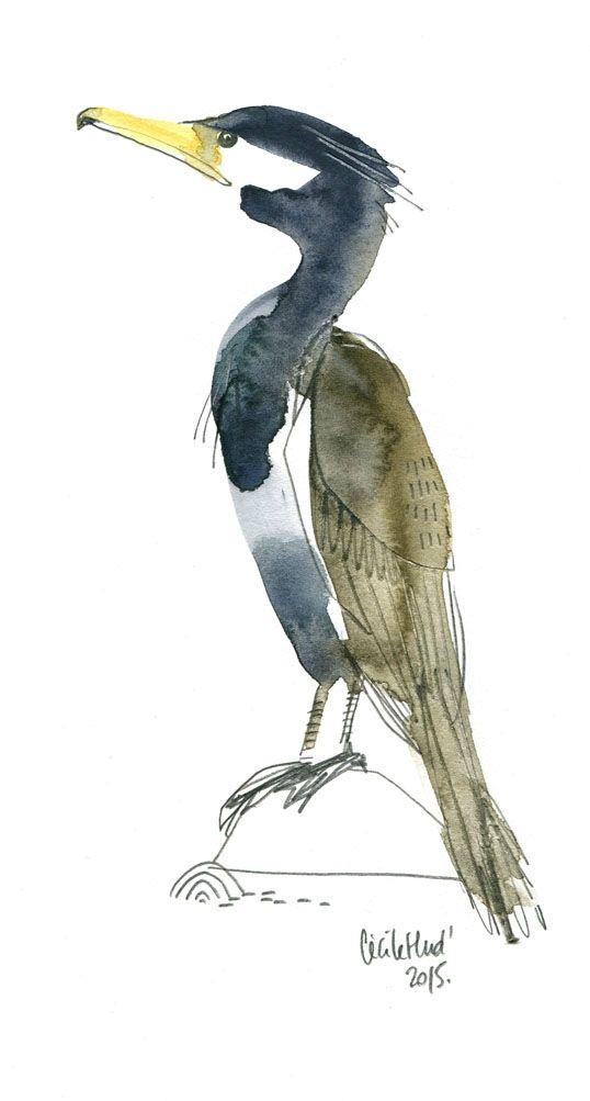 cormoran, Cécile Hudrisier