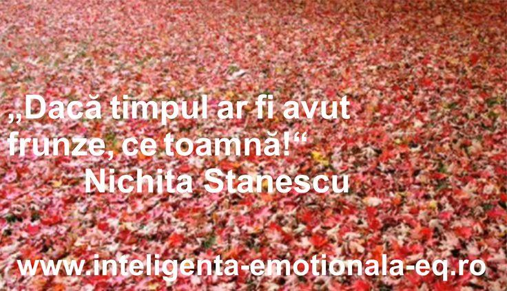 """""""Dacã timpul ar fi avut frunze, ce toamnã!"""" Nichita Stanescu"""