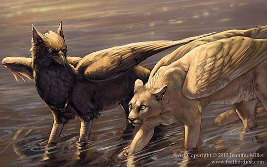 Creative Illustrations by Jennifer Miller