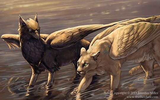 """""""We're not friends."""" Sly hissed. The griffon, Halo, looked away. Halo wanted to be friends, but Sly believed in cats eating birds, and wouldn't give the fact up.  """"The ONLY reason we are doing this together, is so that we can stop a war."""" Sly hissed again.  """"Okay, okay."""" Halo said. They trudged on through the water. It was clean. The rocky bottom felt good and cool."""
