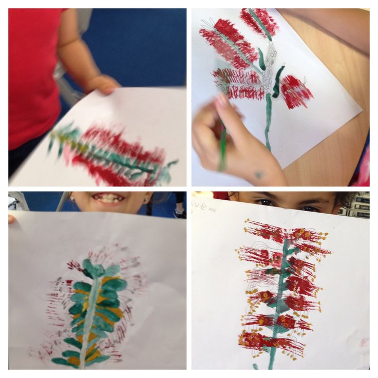 I love combining Art and Science. This week we did observational drawings and watercolours of red bottle brush flowers. Fits beautifully with our integrated History (Australian colonisation), Geography (States of Australia) and Science (Australian Native Plants and Animals)... A touch of Australian Poetry doesn't hurt either.