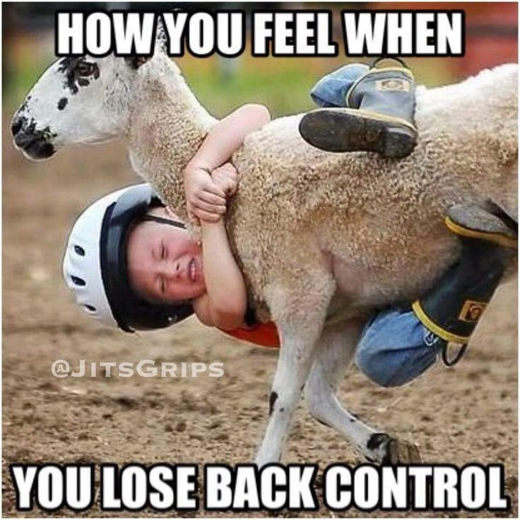 Mutton Bustin!! i did that when i was younger and boy, it feels the same now that i'm doing BJJ