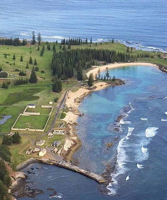 Norfolk Island Nature Watch: Stingrays