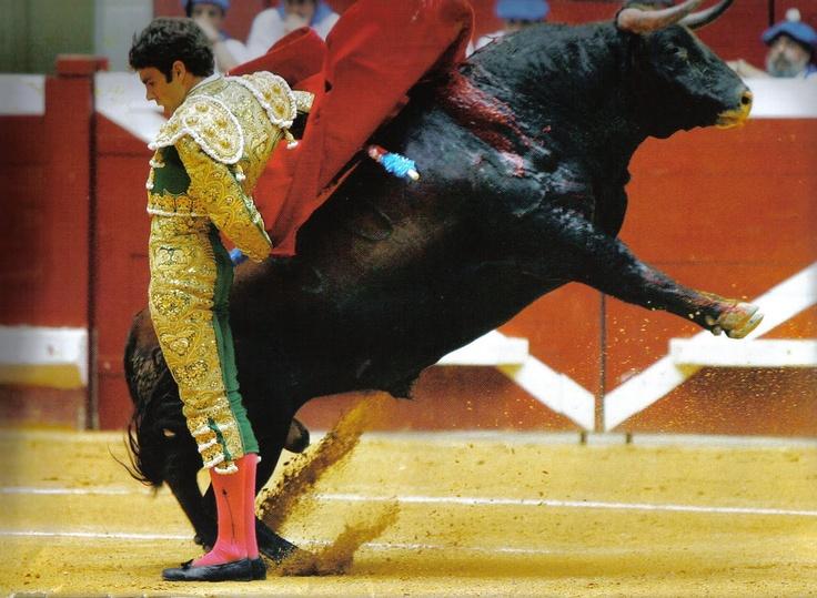 la elegancia en el toreo....José Tomás