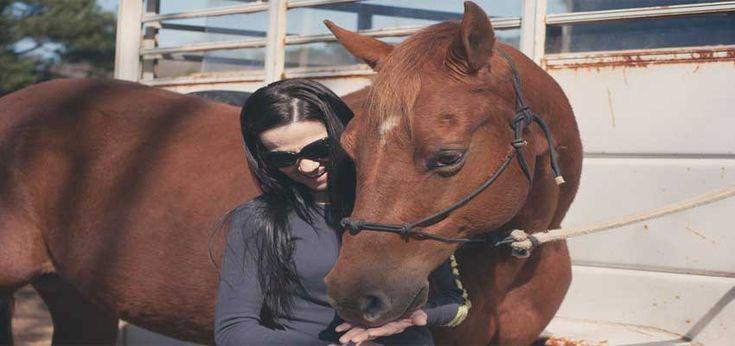 giv hobby gaven til teenagepiger som f.eks. hesteudstyr