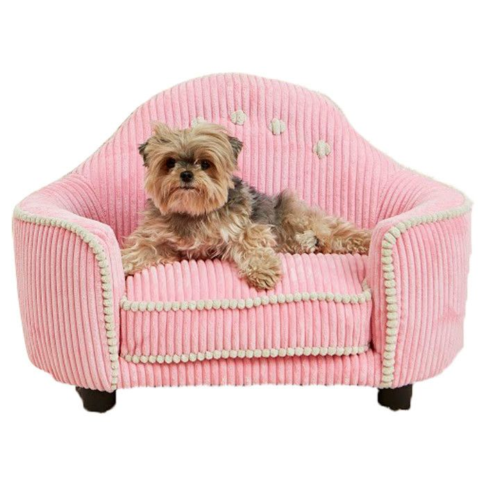 Joss And Main Adorable Pinterest Puppys Puppy Beds And Cute Little Puppies