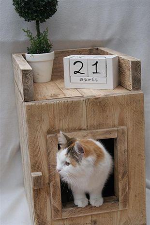 Steigerhout kattenbak