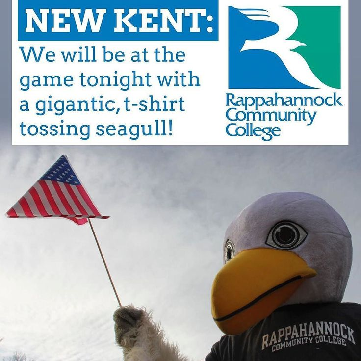 NEW KENT: We will be at the game tonight with a gigantic t-shirt tossing seagull  rain or no rain! #newkentcounty #newkent #mondaynightfootball #mnf #rappahannock #community #college #comm_college #virginia