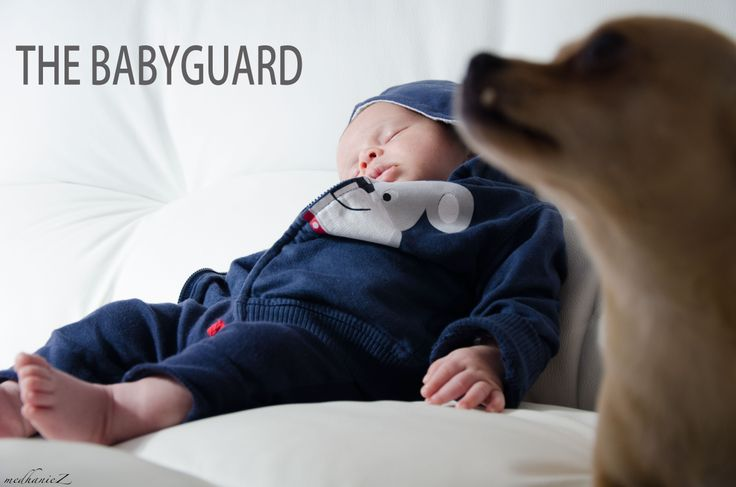 The Babyguard  #photography #baby #digitalsposi
