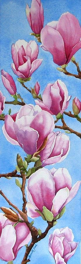 Tulip Tree Painting by Brenda Jiral - Clusters of Magnolia blossoms against a blue sky background.