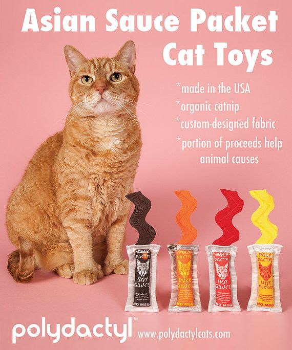 Theyre finally here! Asian squirting sauce packet cat toys! This is a listing for four (4) asian squirting sauce packet cat toys. They look like