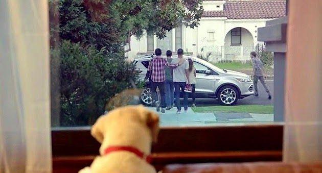 VIDEO: Este anuncio de la cerveza Budweiser intenta promover el consumo responsable. Cuando bebes y conduces puedes dejar sola a tu familia y amigos. Y para algunos de esos amigos, la espera nunca terminará.