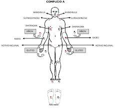 Resultado de imagen para biomagnetismo medico puntos de rastreo