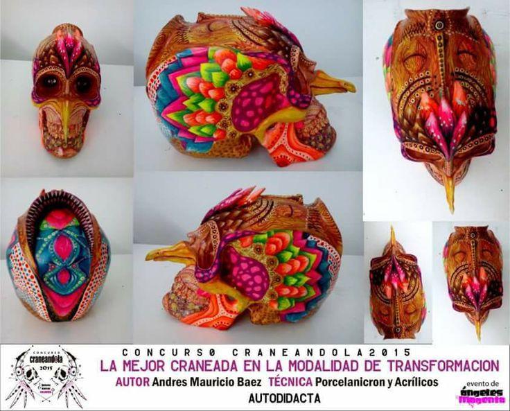 La obra ganadora en la modalidad de #transformacion de la 3ra edición del #concursocraneandola evento de la marca @angelesmagenta #skull #skullart #colores #calavera #ave #naturaleza