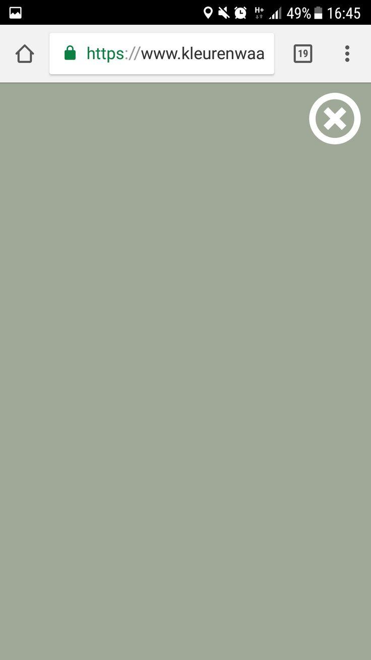 """Kleur """"jofel"""" van Praxis = perfecte warm groene kleur"""