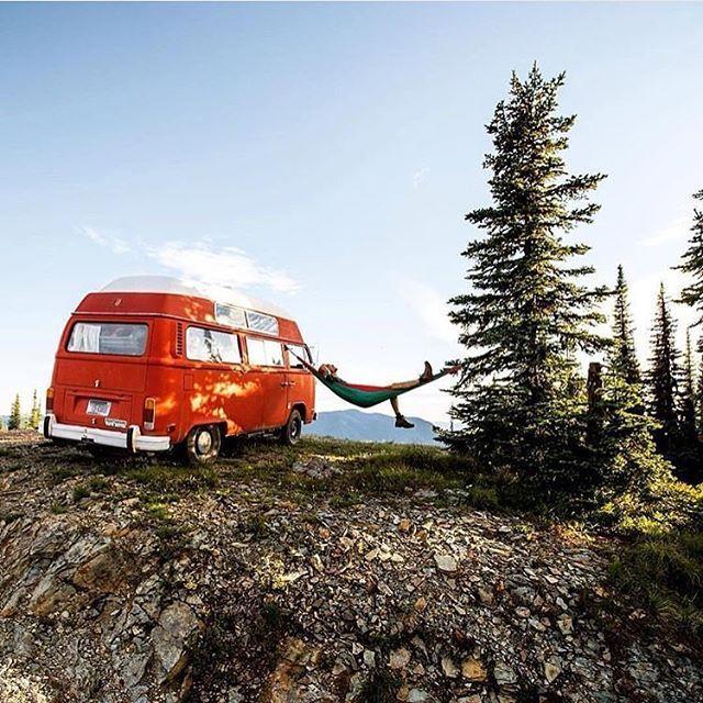 Best 25 Camping Gear Ideas On Pinterest