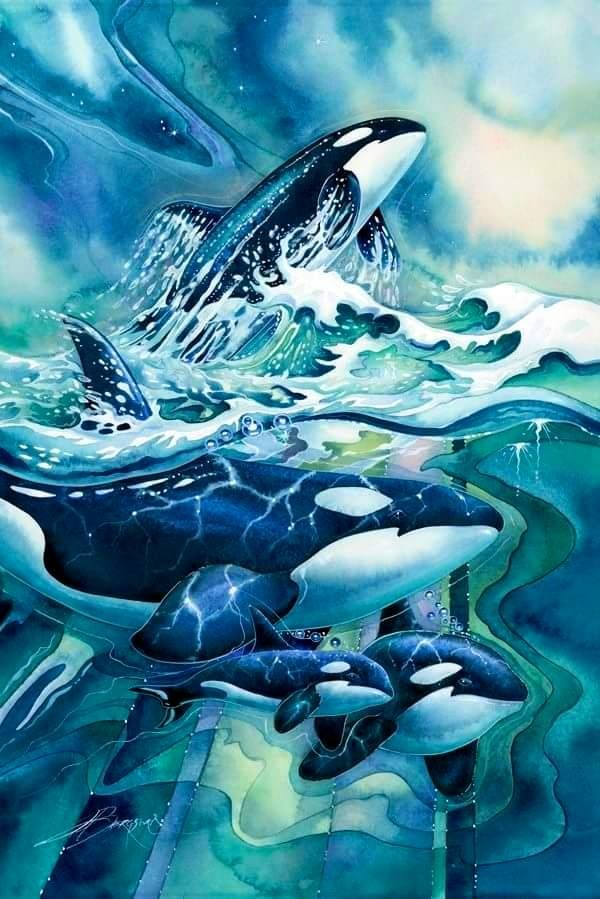 Beautiful orca art work