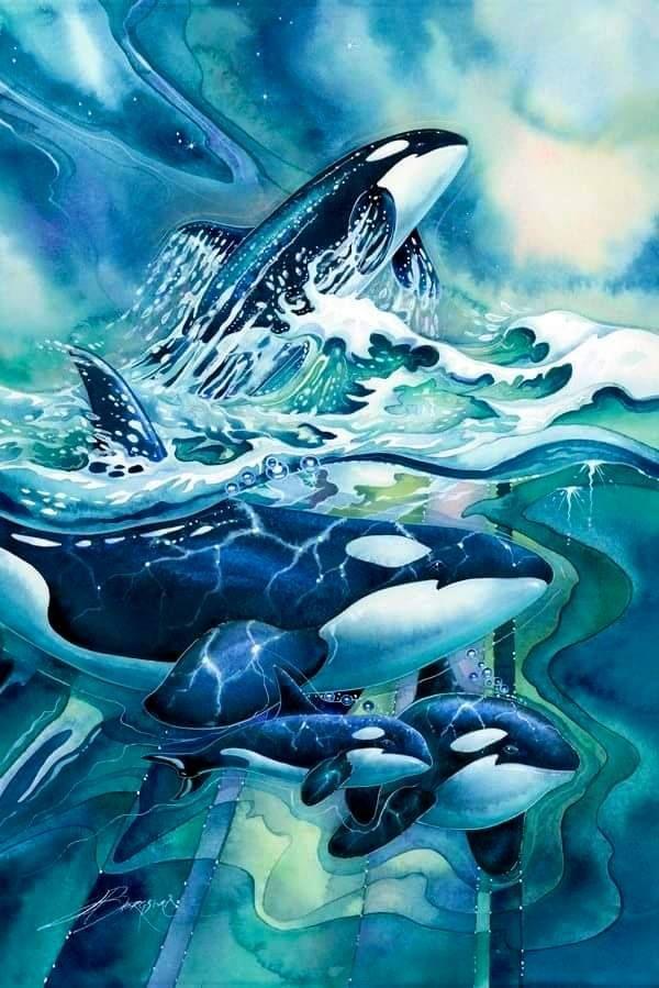 Beautiful orca art work