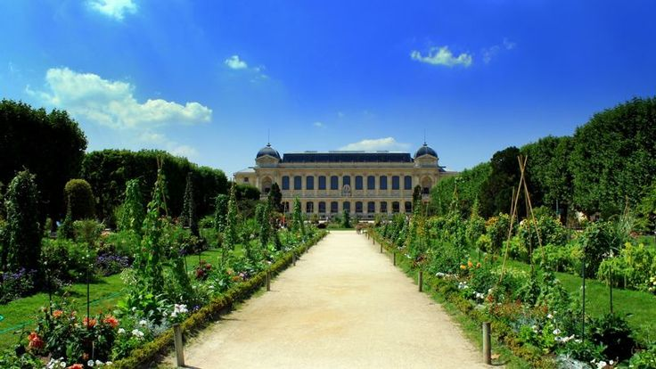 10.307 euros le m² : c'est le prix moyen du m² des appartements situés aux alentours du Musée d'histoire naturelle et du Jardin des plantes, situés dans le Ve arrondissement. Ce tarif est 30% plus élevé que celui de la moyenne à Paris et 4% inférieur à qu'à la moyenne du Ve arrondissement. Le musée national d'histoire naturelle est le 9e site culturel le plus visite de Paris avec près d'1,9 million de touristes.