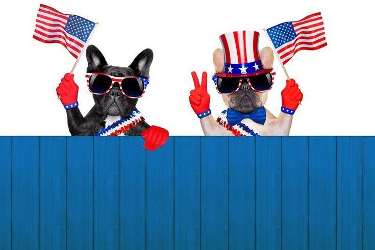 Elecciones en EUA han reproducido más de 20 millones de horas de video en redes sociales