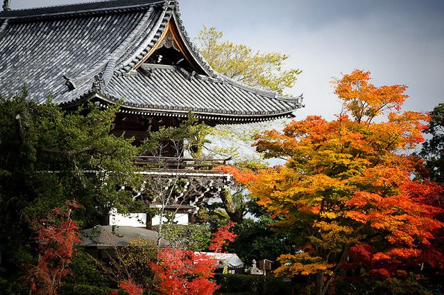 Kyoto Itineraries for 1 day, 2 days, 3 days, 4 days and 5 days, plus tailored…