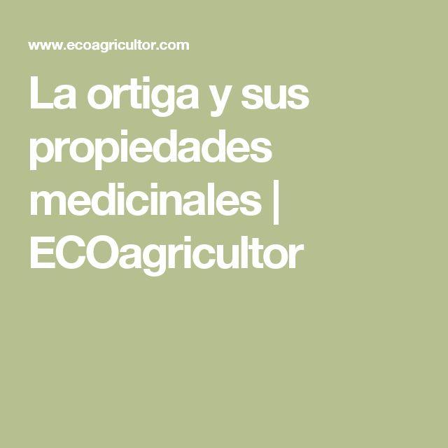 La ortiga y sus propiedades medicinales | ECOagricultor