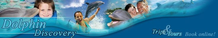 Swim with the dolphins on Anguilla with Aqua Mania Adventures!