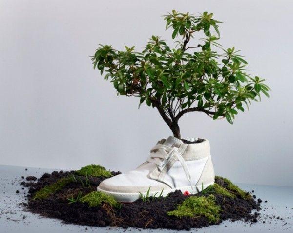 Картинки по запросу Экологический дизайн