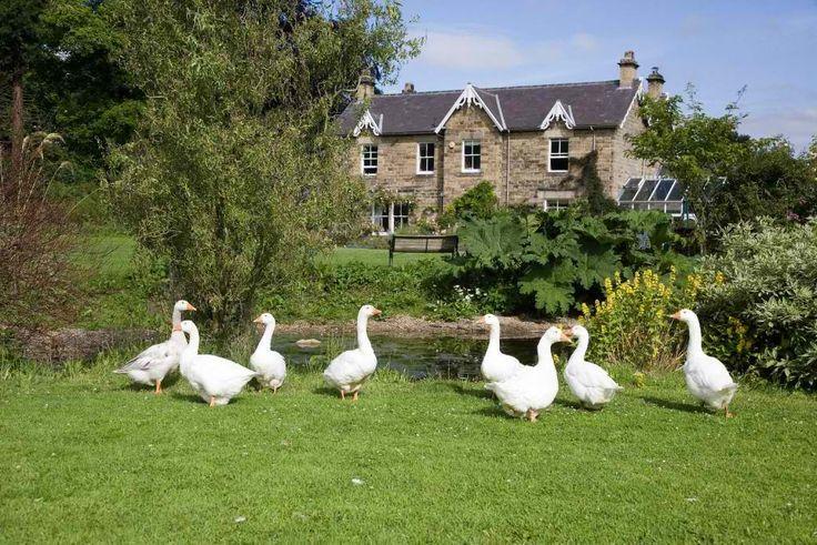 An English farm.