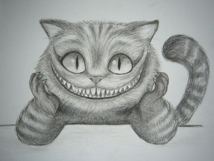 1000+ ideas about Sketch Of Cat on Pinterest | Pencil sketching, Croquis and How to draw cats