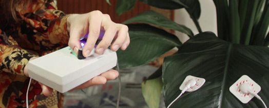 MIDI Sprout enables plants to play synthesizers in real time.