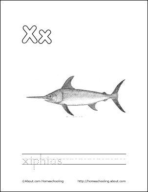 Xiphias Coloring Page 1000+ images about LET...
