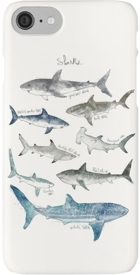 A chart featuring the great white, shortfin mako, bull, hammerhead, blacktip reef, tiger, thresher, and whale shark. See more animal charts here: http://rdbl.co/1HZRRo5 • Also buy this artwork on phone cases, apparel, kids clothes, and more.