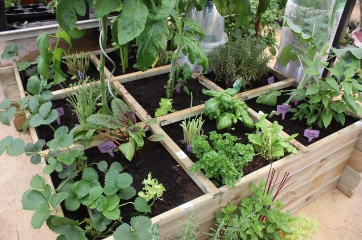 Les 36 meilleures images propos de jardin sur pinterest for Jardin potager en anglais