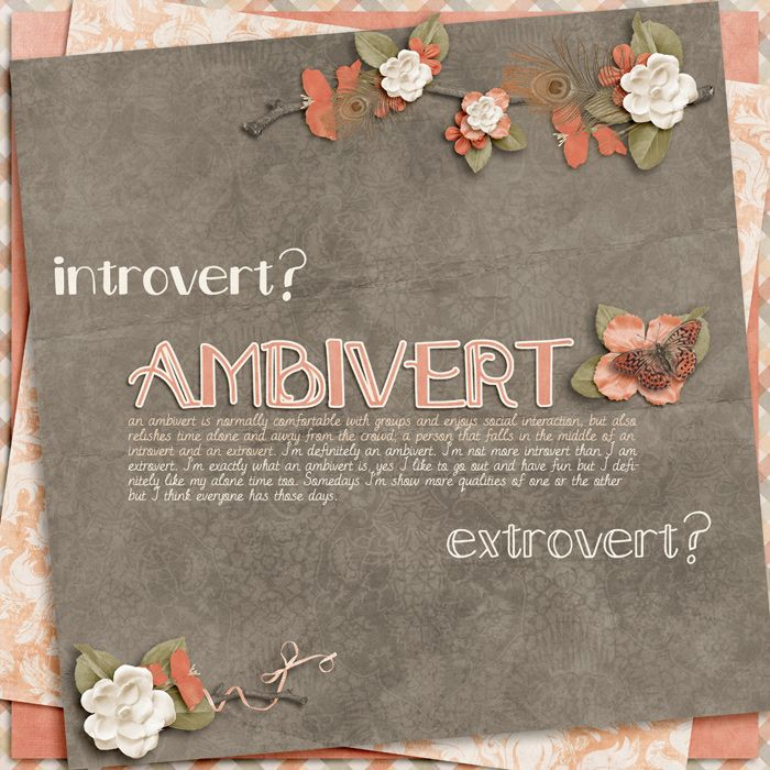 """Ambivert: If you don't identify as an """"extrovert"""" or """"introvert,"""" you might be an """"ambivert."""" An ambivert is moderately comfortable with groups and social interaction, but also relishes time alone, away from a crowd."""