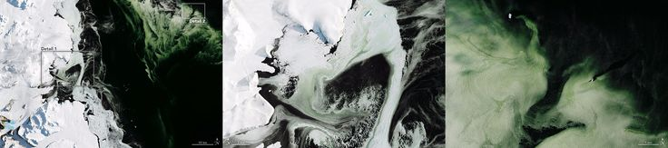 It may look like someone dyed the water green for St. Patrick's Day, but the green hue visible off the coast of Antarctica is entirely natural. On March 5, 2017, the Operational Land Imager (OLI) on Landsat 8 captured these natural-color images of water, sea ice, and phytoplankton. The region pictured is Antarctica's Granite Harbor—a cove in the vicinity of the Ross Sea. The first image shows a wide view of the area, and the subsequent images show detailed views of the green slush ice.