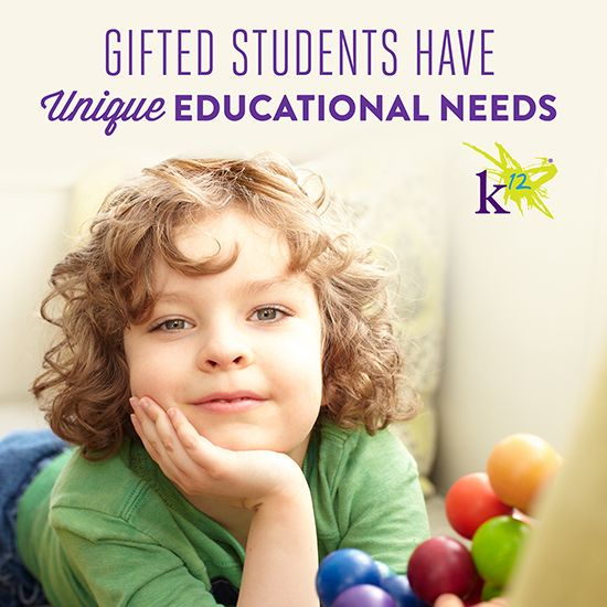 essay gifted children